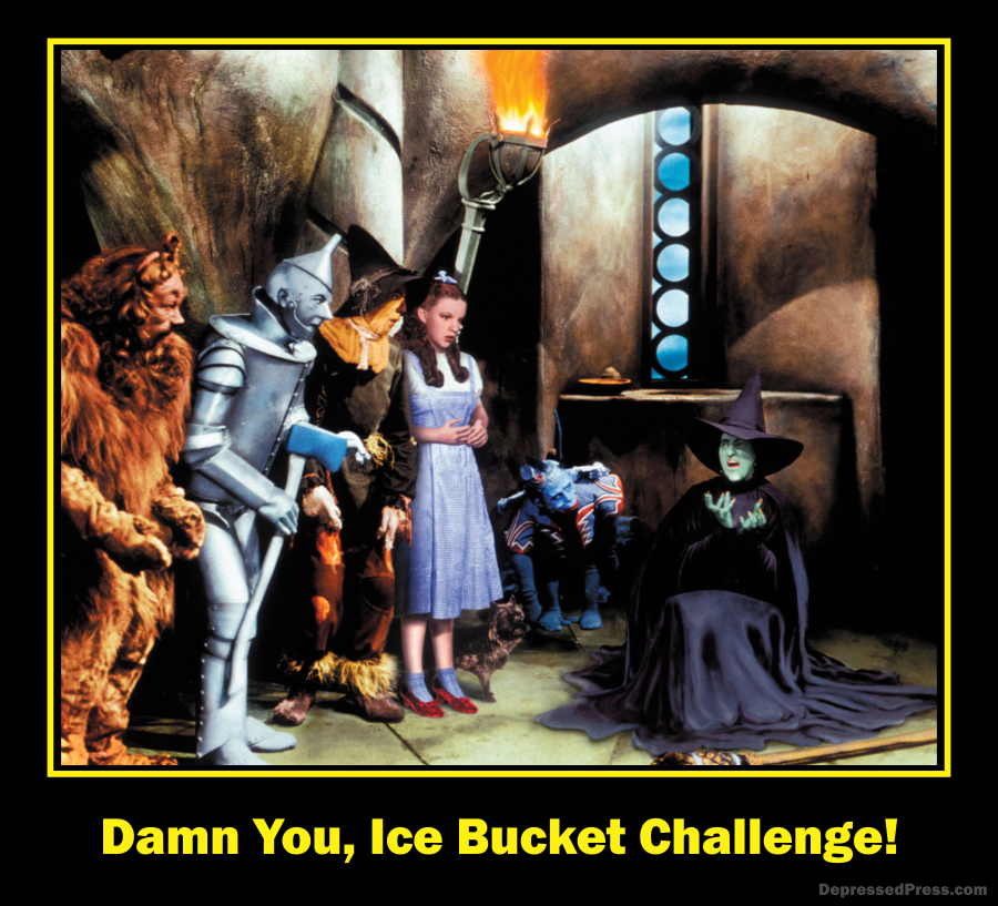Damn You, Ice Bucket Challenge!