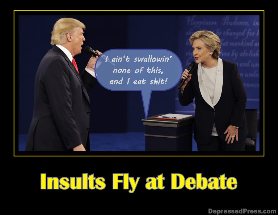 insults-fly